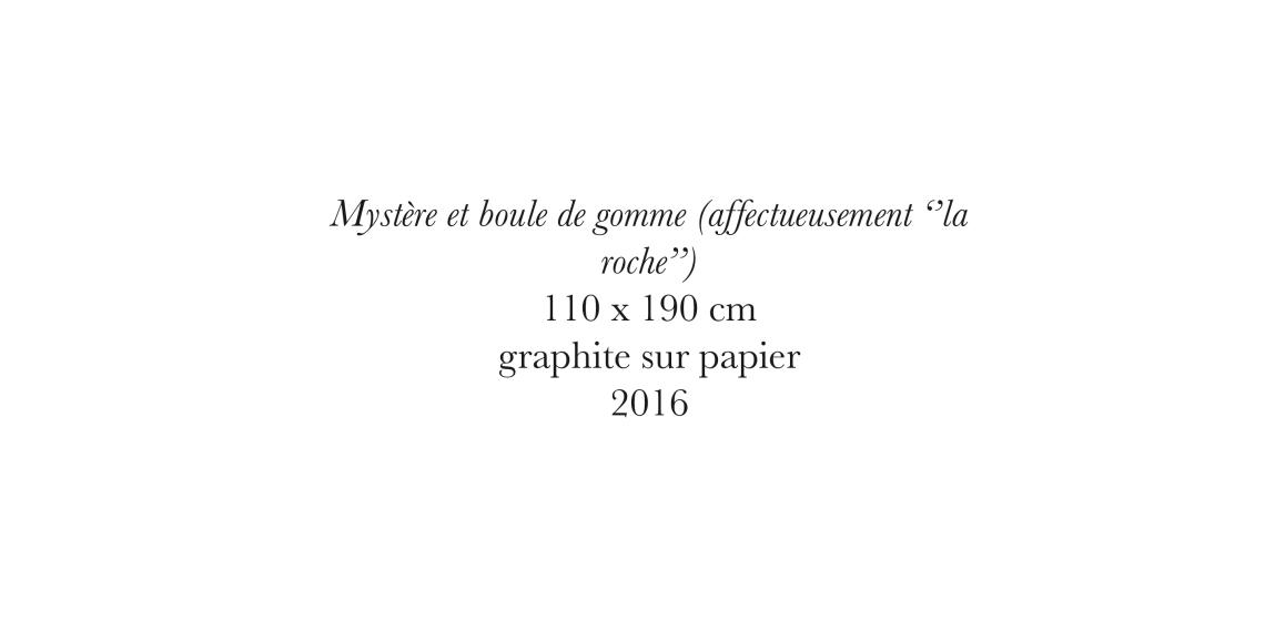 description_roche